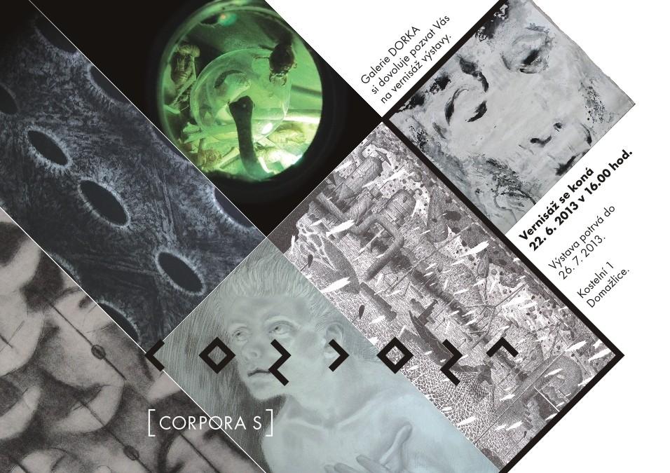 13 corporaS 20131